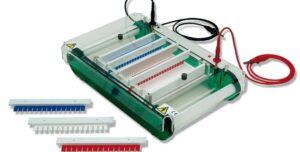 Formation Électrophorèse et caractérisation des produits biologiques