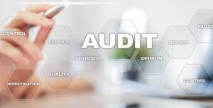 Formation Audit QSE